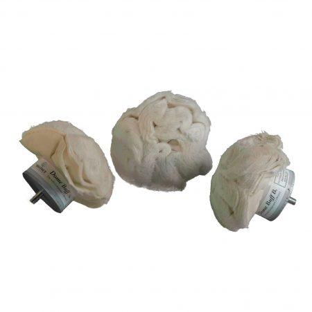Chestnut dome buffs